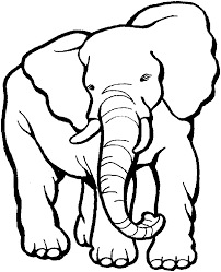 Download Elephant Coloring Pages Printable Animals Or Print Clip