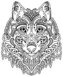 Small Picture Adult Coloring Pages Zebra colorear Pinterest Adult coloring