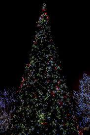 Cincinnati Zoo Tickets Festival Of Lights Oh Christmas Tree Oh Christmas Tree The Tree At The