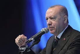 أردوغان يندد بـ'بذاءة' دراغي ردا على نعته بـ'الديكتاتور'
