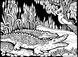 Small Picture adult africa crocodiles Coloring pages Printable