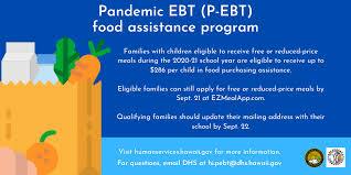 p ebt food and financial istance