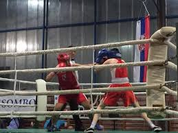Резултат слика за вече бокса у сомбору