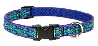 Patterned Dog Collars Magnificent Patterned 4848 Adjustable Dog Collar Rovers Kit Rover's Kit