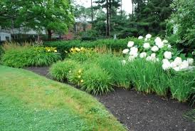 Small Picture Perennial Gardens Dirt Simple