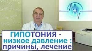 <b>Евдокименко</b> П.В. — Видео