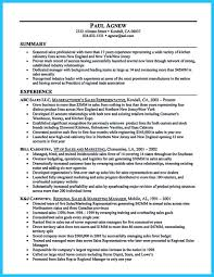 Car Salesman Resume Example automobile sales resume sales sales lewesmr car sales automotive 99