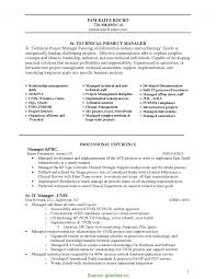 Fresh Technical Program Manager Resume It Manager Resume Page 2