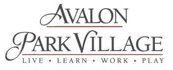 Image result for avalon park village tavares