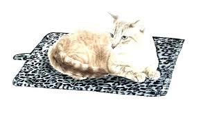outdoor cat bed pet heater outdoor cat heating pad cat heated bed thermal self heating pet