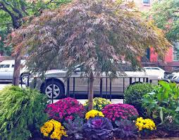 Small Picture Boerum Hill Brooklyn NYC Townhouse Garden Design Sidewalk Fall
