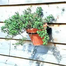 outdoor wall planters planter mounted hanging terrific outside uk