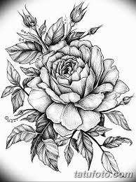 эскиз розы для тату девушке 08032019 002 Tattoo Sketches