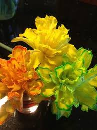 add food coloring to the water and watch the petals change the daffodil on the food coloring50th birthdaybirthday