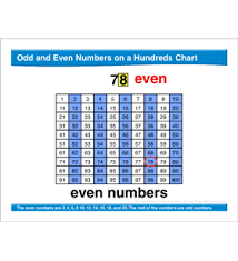 Skip Counting By 16 Chart Math Review Hundred Chart Skip Counting Place Value By