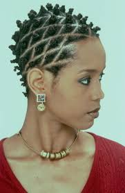 Black Woman Hair Style 275 best frochichair images natural hair styles 3963 by wearticles.com