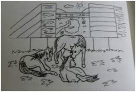 Paardenpraattv Archieven Wij Testen Het