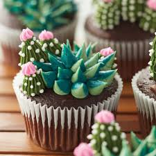 Blooming Succulent Cupcakes Wilton