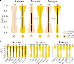 Bacteria And Viruses Venn Diagram A Phylogenomic Data Driven Exploration Of Viral Origins And
