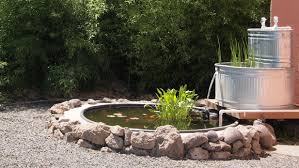 stock tank fish pond with stock tank filter peaceful serenity you