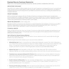 Summary Examples For Resumes Professional Summary Resume Examples ...