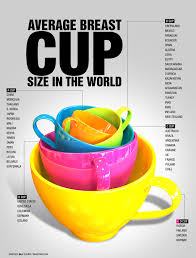 Breast Size In Fruit Bra Size Measurement Chart South Africa