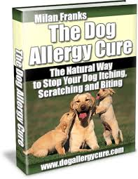 Dog Allergy Cure