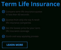 Geico Life Quotes Simple New Geico Life Insurance Quote Www Life Insurance Quotes Unique Best