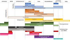 Antibiotic Chart Image Result For Antibiotic Spectrum Chart Chart Bar