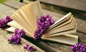 book read relax lilac bank old book pages rest