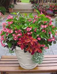 Small Picture Garden Design Garden Design with Diy container garden ideas
