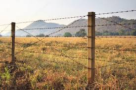 Barbed wire fence and grass field Stock Photo khunaspix 19654829