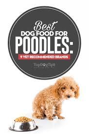 the best dog food for poodles