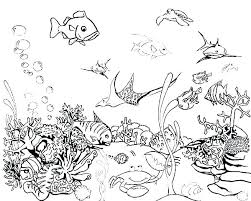 Rainbow Fish Coloring Page Printable Rainbow Fish Coloring Page Free