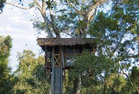 Take The Kids On An Outdoor Adventure In The Lake District Treehouse Lake District