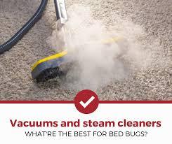 5 best bed bug vacuums steamers