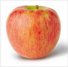 honeycrisp apple selection information nutritional information tips trivia