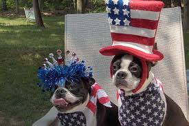 Image result for memorial day images barbecue