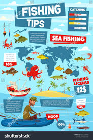 Color C Lector Chart Fishing Infographic Sea Fish Catch Diagrams Stock Image