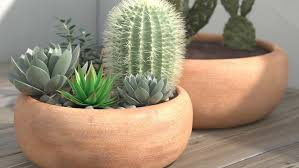 the 13 best outdoor plant pots in 2021