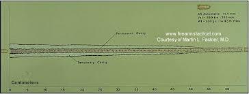 Ballistics Chart 45 Long Colt Ammunition Chart