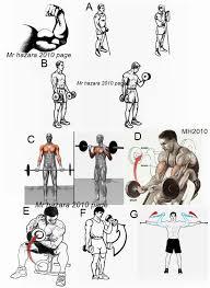 Gym Biceps Workout Chart Pin On Karate