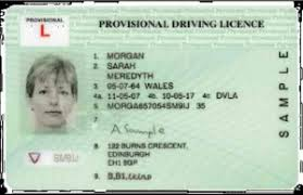 Provisional Will School pass Licence i Driving