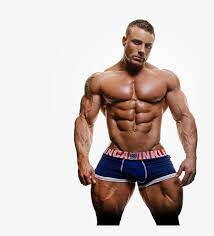 bodybuilder muscle png picture free