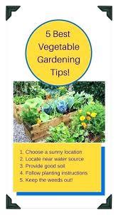 garden soil home depot raised bed garden soil raised bed gardening success raised bed garden soil