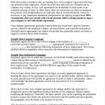 Non Compete Agreement Form 11 Standard Non Compete Agreement ...