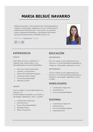 Formato Curriculum Profesional Word Magdalene Project Org