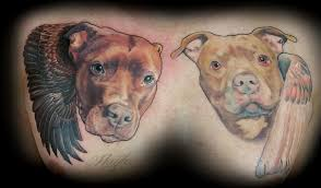 Lucky Bamboo Tattoo Tattoos General Pitbull Portraits With Wings