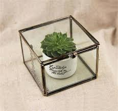 glass plant terrariums geometric glass terrarium cube handmade glass plant terrarium modern planter for indoor glass glass plant