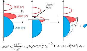 coo 3 δ perovskite electrocatalysts